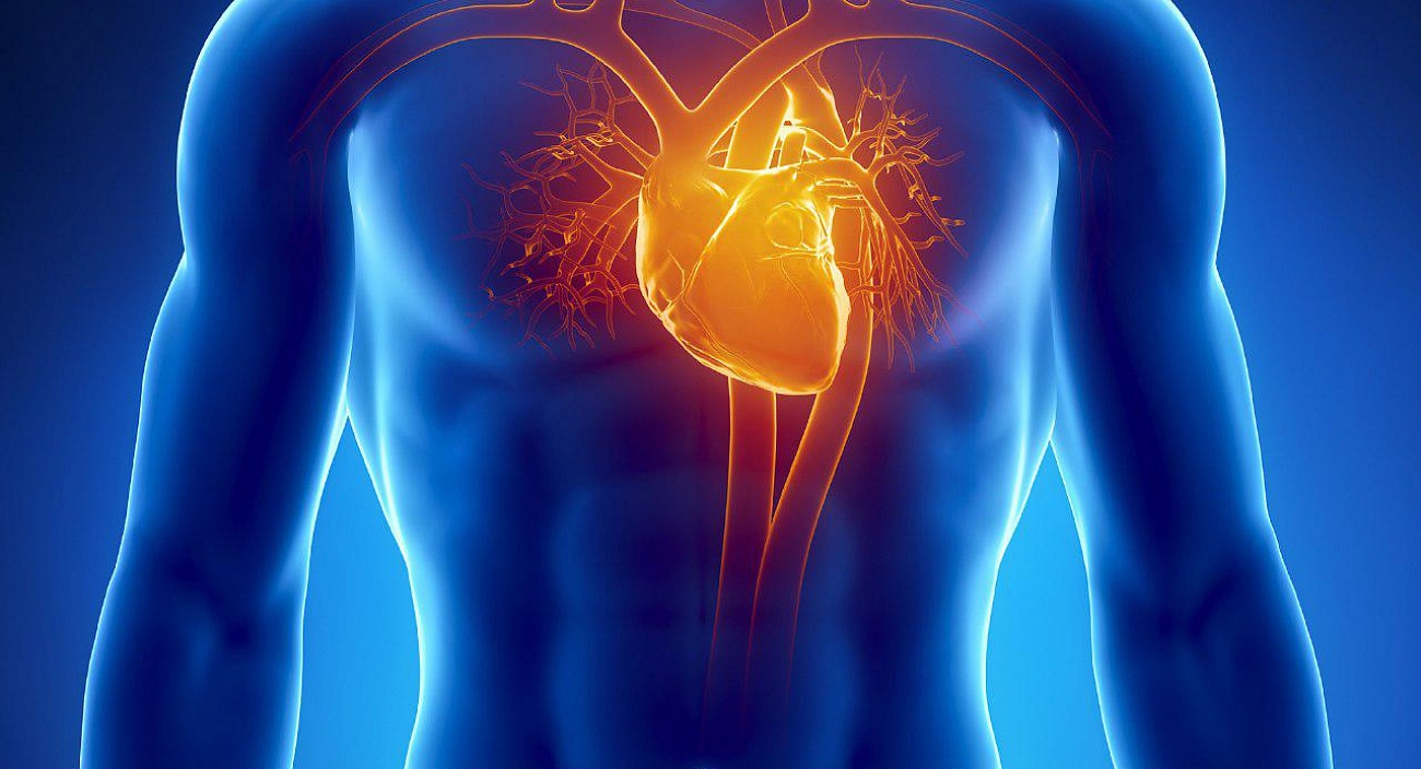 Cardiology and cardiac surgery